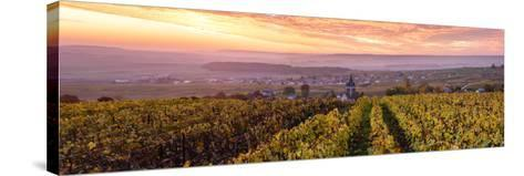 Colorful Sunrise over the Vineyards of Ville Dommange, Champagne Ardenne, France-Matteo Colombo-Stretched Canvas Print