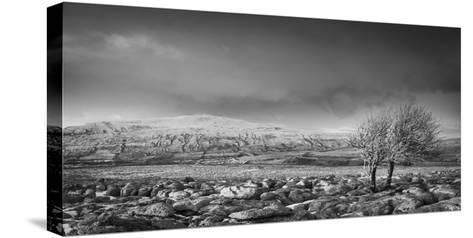 Ribblehead Viaduct-Nick Ledger-Stretched Canvas Print