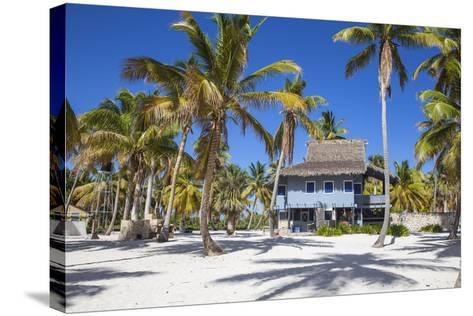Dominican Republic, Punta Cana, Parque Nacional Del Este, Saona Island, Canto De La Playa-Jane Sweeney-Stretched Canvas Print
