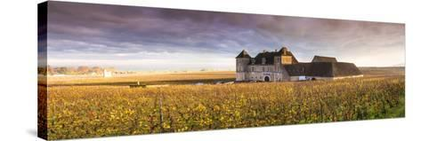 Vougeot Castle and Vineyards, Burgundy, France-Matteo Colombo-Stretched Canvas Print
