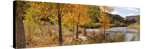 People Fishing in the Rio Grande River, Orilla Verde Recreation Area, Pilar, Taos--Stretched Canvas Print