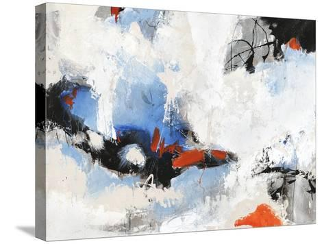 Floating Free-Joshua Schicker-Stretched Canvas Print