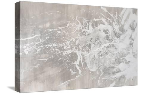 Receiver-Joshua Schicker-Stretched Canvas Print