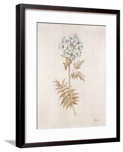 French Botanicals VI-Rikki Drotar-Framed Art Print