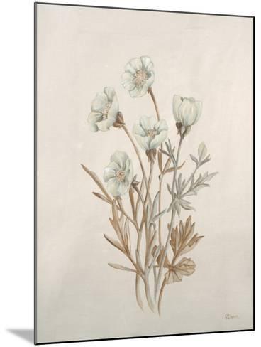 Botanicals IX-Rikki Drotar-Mounted Giclee Print