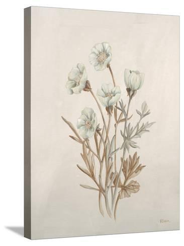 Botanicals IX-Rikki Drotar-Stretched Canvas Print