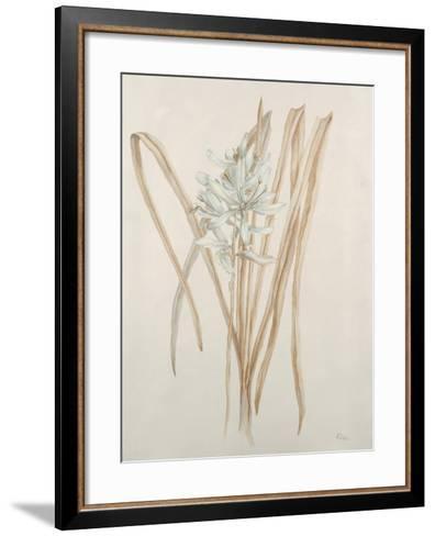 Botanicals V-Rikki Drotar-Framed Art Print