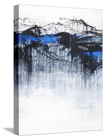 Cloud Burst-Joshua Schicker-Stretched Canvas Print