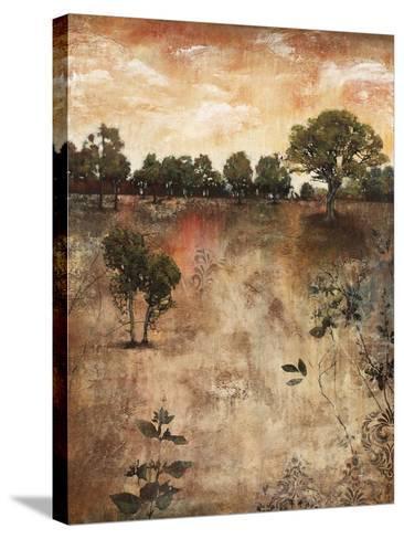 Composure II-Jason Javara-Stretched Canvas Print
