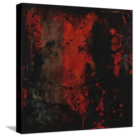 First Glance-Joshua Schicker-Stretched Canvas Print