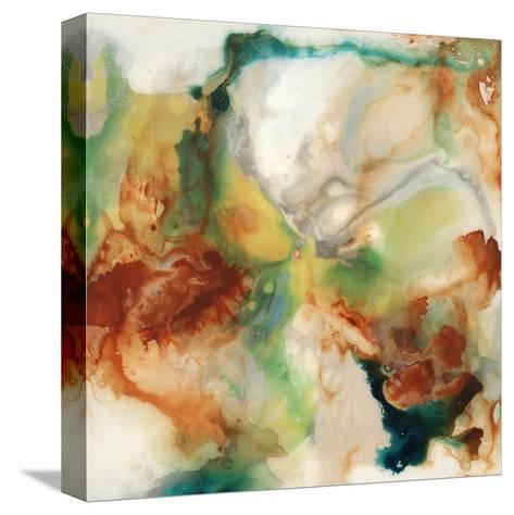 Flint II-Joshua Schicker-Stretched Canvas Print