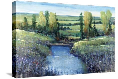 Hidden Pond-Tim O'toole-Stretched Canvas Print