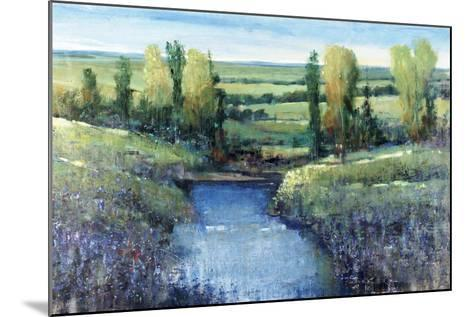 Hidden Pond-Tim O'toole-Mounted Giclee Print