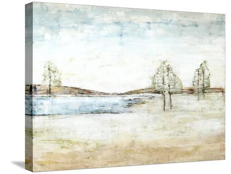 Vanishing Landscape-Kari Taylor-Stretched Canvas Print