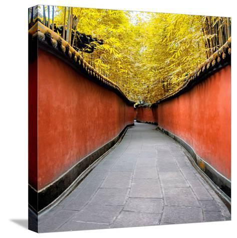 China 10MKm2 Collection - Alley Bamboo-Philippe Hugonnard-Stretched Canvas Print