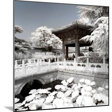 China 10MKm2 Collection - Another Look - Lotus Temple-Philippe Hugonnard-Mounted Photographic Print