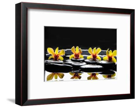 Still Life with Four Orchid with Stones on Water Drops-crystalfoto-Framed Art Print