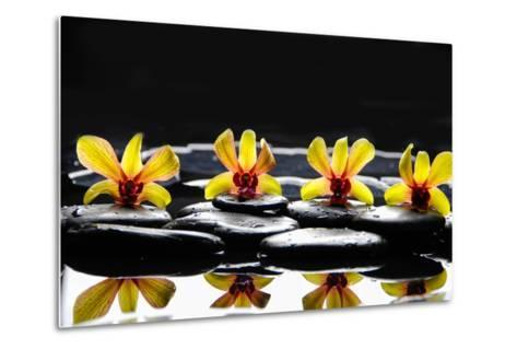 Still Life with Four Orchid with Stones on Water Drops-crystalfoto-Metal Print
