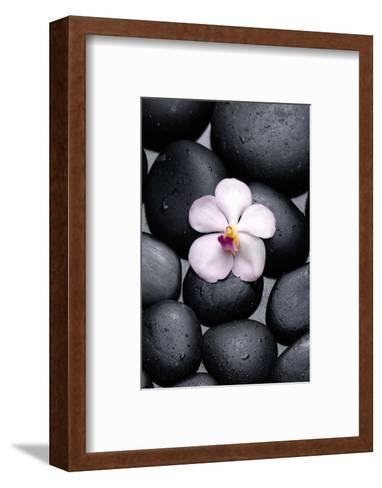 White Orchid with Therapy Stones-crystalfoto-Framed Art Print