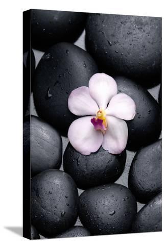 White Orchid with Therapy Stones-crystalfoto-Stretched Canvas Print