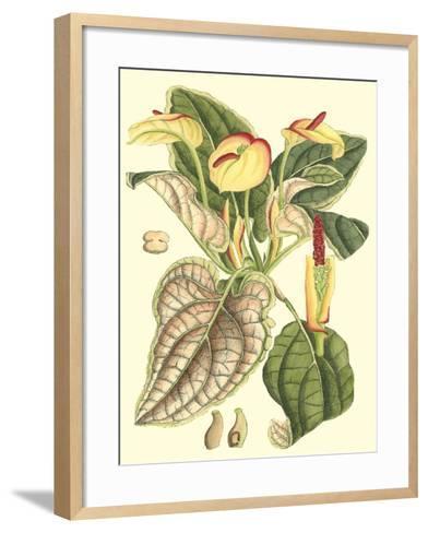 Botanical Fantasy III--Framed Art Print