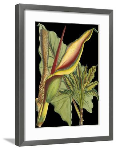 Tropical Plant on Black II--Framed Art Print
