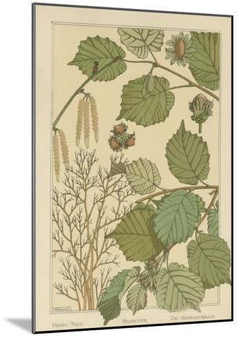 Hazel Tree-M^P^ Verneuil-Mounted Art Print