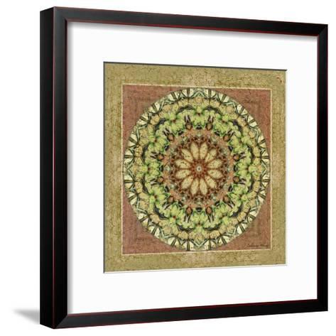 Floress Mandala IV-Catherine Kohnke-Framed Art Print