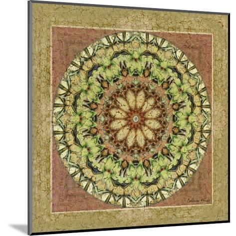 Floress Mandala IV-Catherine Kohnke-Mounted Art Print