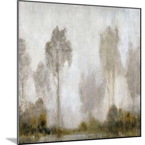 Misty Marsh I-Tim O'toole-Mounted Art Print