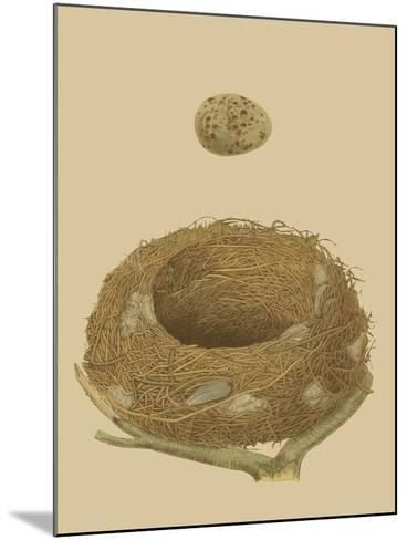 Antique Nest and Egg IV-Reverend Francis O^ Morris-Mounted Art Print