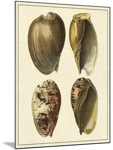 Crackled Antique Shells II-Denis Diderot-Mounted Art Print