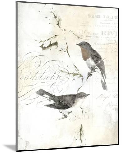 Rustic Gould III-Studio W-Mounted Art Print