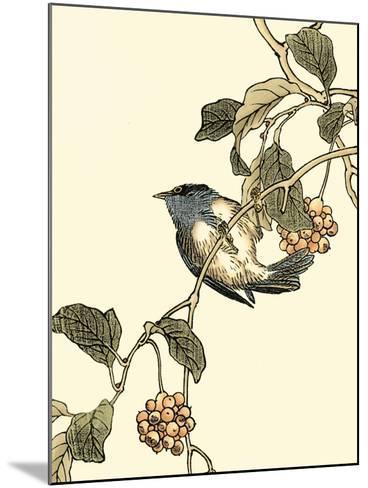Oriental Bird on Branch III-Vision Studio-Mounted Art Print