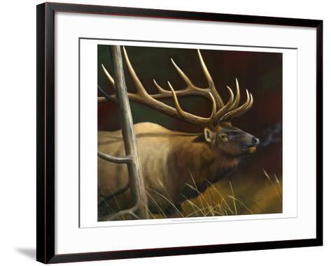 Elk Portrait II-Leo Stans-Framed Art Print