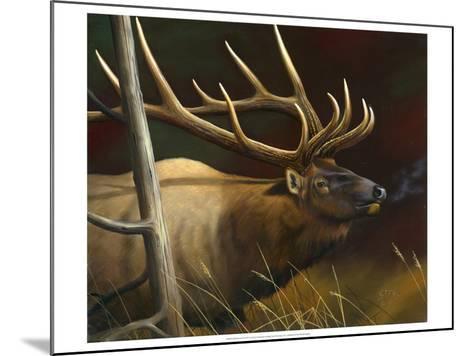 Elk Portrait II-Leo Stans-Mounted Art Print