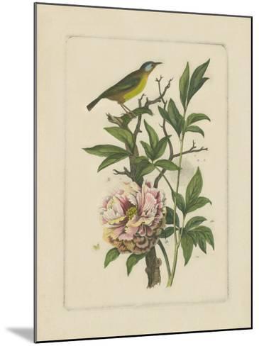 Exotic Bird and Botanical I--Mounted Art Print