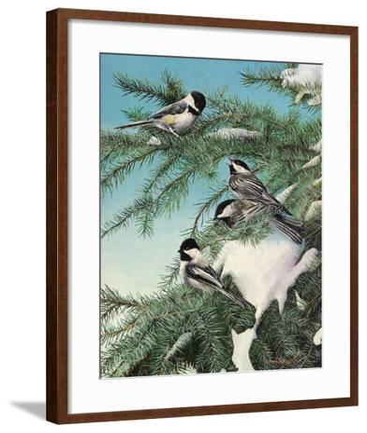 Winter Chicadees-Kevin Daniel-Framed Art Print