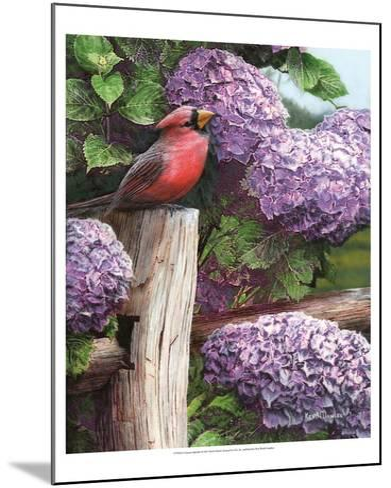 Crimson Splendor-Kevin Daniel-Mounted Art Print