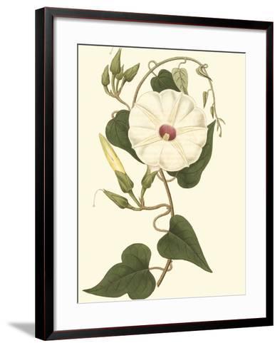 Blossoming Vine I-Sydenham Teast Edwards-Framed Art Print
