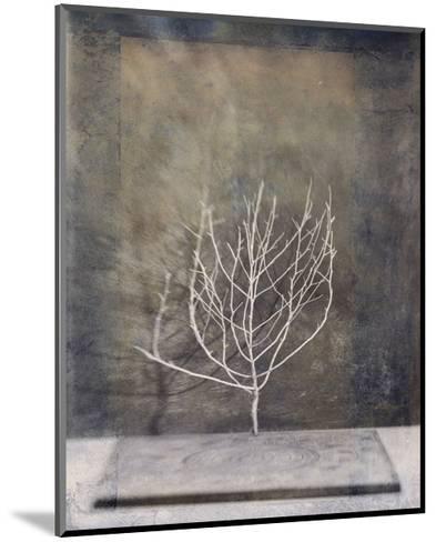 Desert Form II-Elena Ray-Mounted Art Print