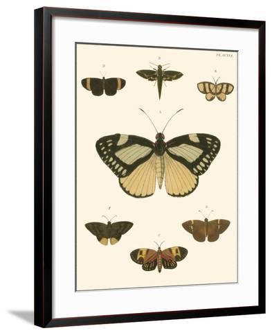 Small Heirloom Butterflies II-Pieter Cramer-Framed Art Print