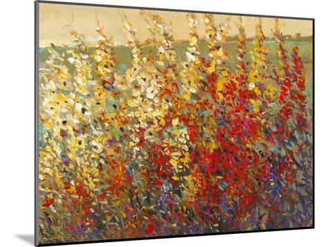 Field of Spring Flowers I-Tim O'toole-Mounted Art Print
