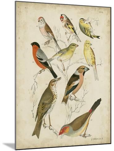Non-Embellished Avian Gathering II-G^ Lubbert-Mounted Art Print