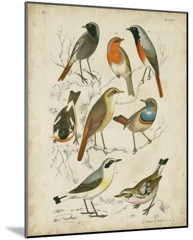Non-Embellished Avian Gathering I-G^ Lubbert-Mounted Art Print
