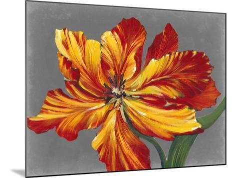 Tulip Portrait I-Tim O'toole-Mounted Art Print