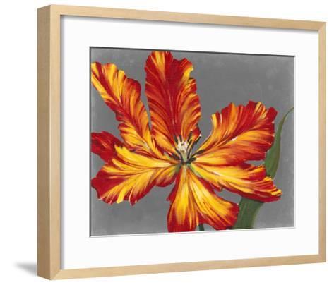 Tulip Portrait II-Tim O'toole-Framed Art Print