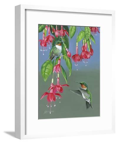 Hummers and Fuchsia-Fred Szatkowski-Framed Art Print