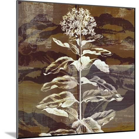 Prairie Mix VI-John Butler-Mounted Art Print