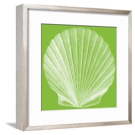 Saturated Shells II-Vision Studio-Framed Art Print